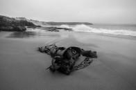 Kelp Crescent Bay
