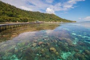 Papua061114_210